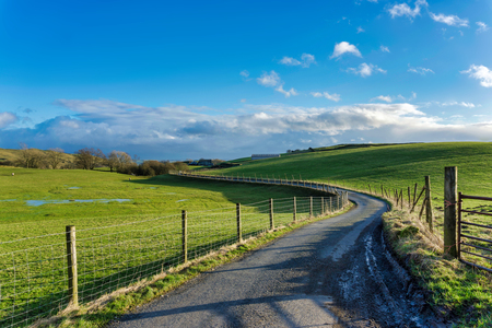 A winding country lane passing through green fields. Stock Photo