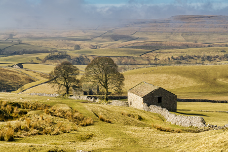 An isolated barn and trees in The Yorkshire Dales. Archivio Fotografico