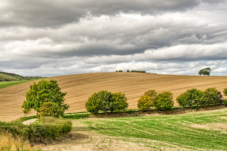 Typical English countryside in autumn, with a ploughed field.