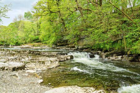 The river Kent near Kendal, Cumbria, Northern England 免版税图像