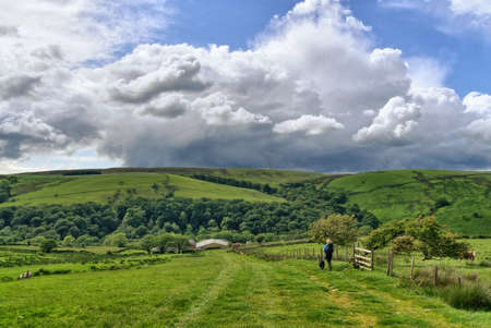 A lone hiker in the Forest of Bowland Banco de Imagens