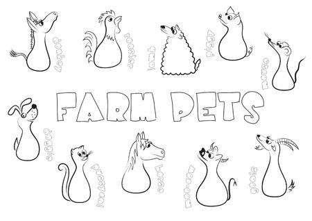 burro: Animales de granja