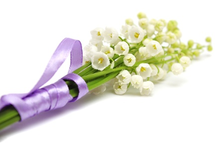 Lily of the valley on a white background