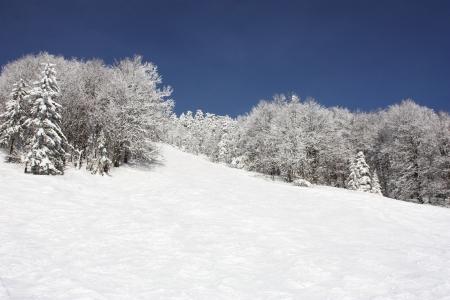 Winter in Carpathians. Mountain landscape . Stock Photo - 18465775