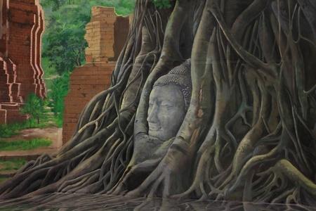budha: Head Budha in The Tree