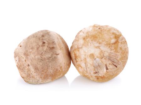 The straw mushroom isolated on white background photo