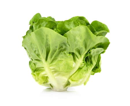 vibrat color: Lettuce isolated on white background.