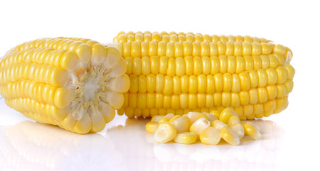 raw corn isolated on the white background. photo