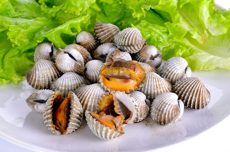 cockles: Boiled cockles with lettuce. Stock Photo