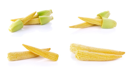 baby corn: Set of Baby corn isolated on a white background. Stock Photo