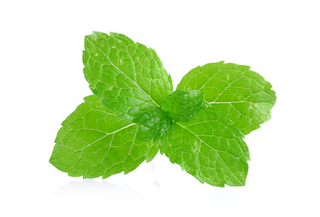 peper: Peper mint isolated on the white background. Stock Photo