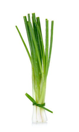 Green onion isolated on the white background. 스톡 콘텐츠