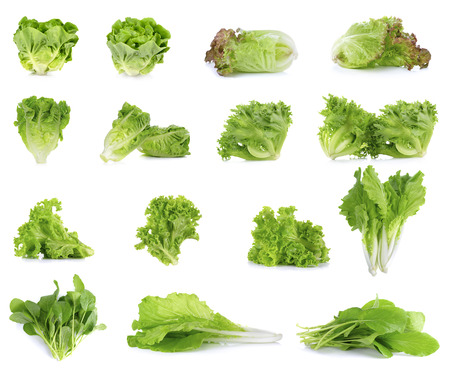 green and white: Collection of Lettuce isolated on white background.