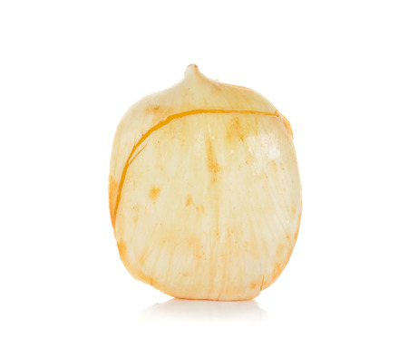 palmyra palm: Asian Palmyra palm, Toddy palm, Sugar palm isolated on white background.