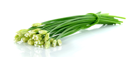alliaceae: Chives flower or Chinese Chive isolated on white background.