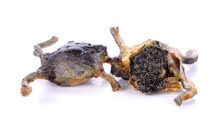 bullfrog: Fried bullfrog isolated on the white background .