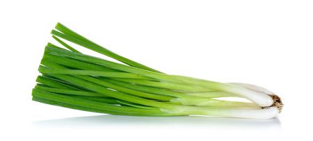 spring green: Green onion isolated on the white background. Stock Photo