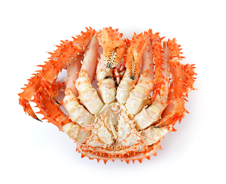 crab legs: Alaskan king crab in isolated white background.