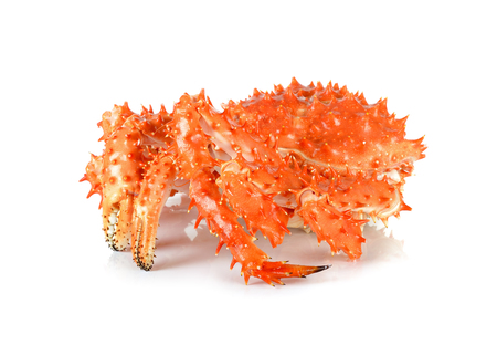 alaskan: Alaskan king crab in isolated white background.