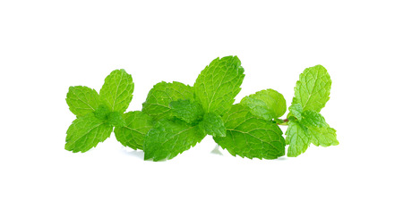 pepper mint: Pepper mint isolated on the white background.