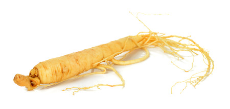 Ginseng isolated on the white background . 스톡 콘텐츠
