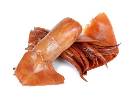 soak: Soak squid isolated on the white background.