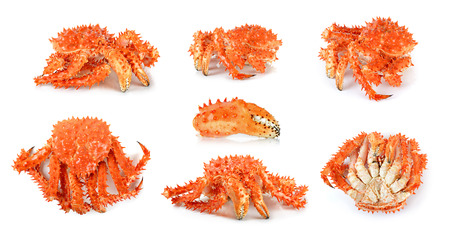 Alaskan king crab in isolated white background.