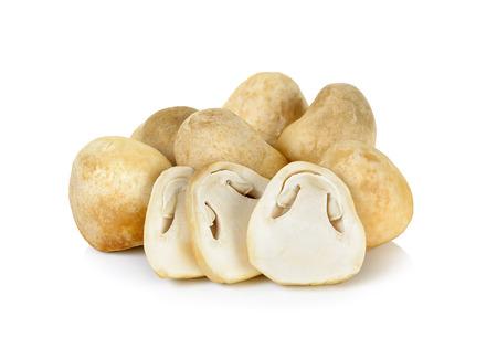 Champignon en morceaux de paille isolé sur fond blanc