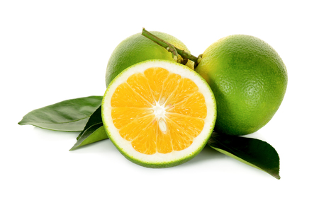 citrus     sinensis: Citrus sinensis isolated on the white background. Stock Photo