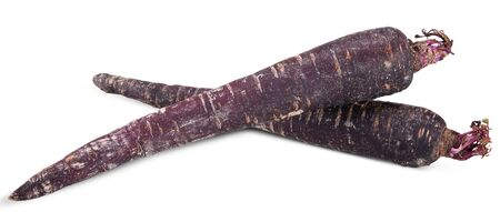 purple carrot isolated on white, carrot clipping path
