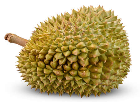 Durian isolated on white