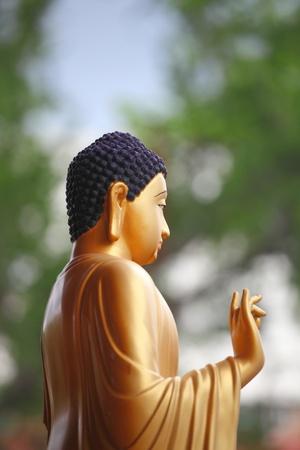 budha: chinese budha statue