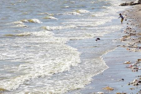 sea pollution: dirty sea beach