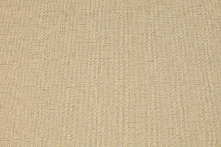 wall paper texture: wall paper texture Stock Photo