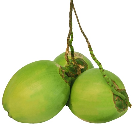 fresh green: three coconuts isolated white