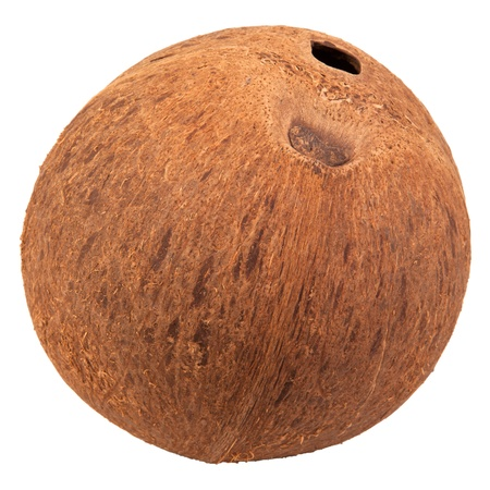 special single  hole of coconut shell  difference other Stock Photo - 12420182