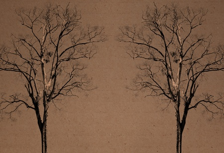 resouce: double tree on recycle paper background Stock Photo