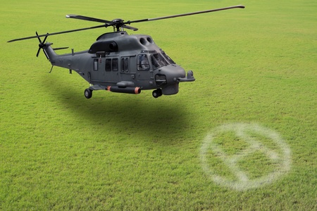 helicopter landing on grass field Stock Photo - 12724823