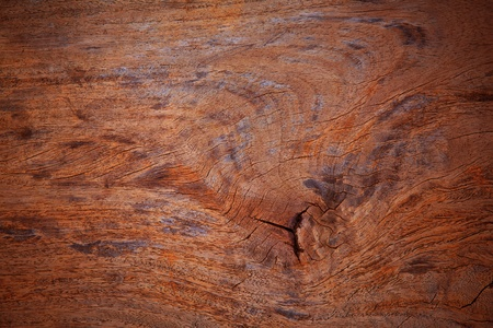 surface texture of old wood photo