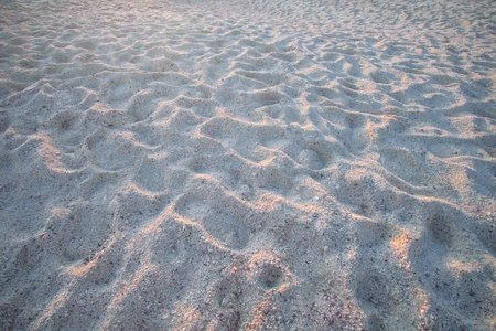 really sand beach texture background and rim light in evening of day Stock Photo - 13378289