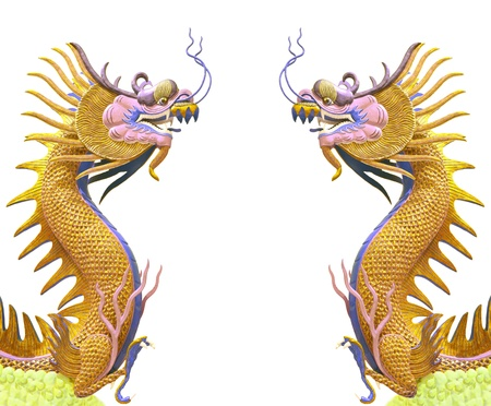 twin golden dragon use as chinese background photo