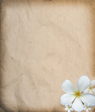 old paper texture  with frangipani flowers use as background photo