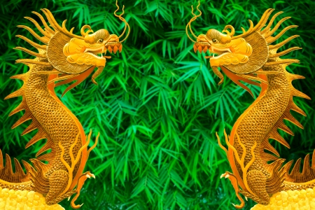 couples golden dragon  on green bamboo leaves background photo