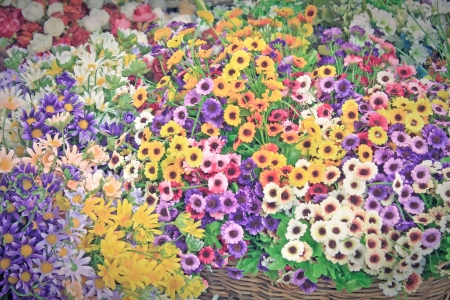 variety of colorful flowers background vintage style Stock Photo - 14081772