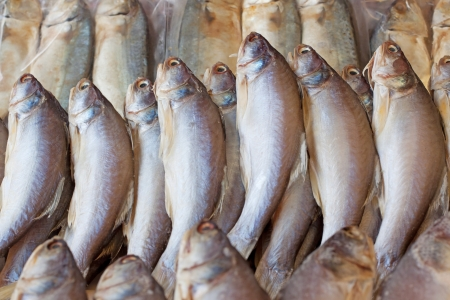 bluefish: dried fish for sale in market