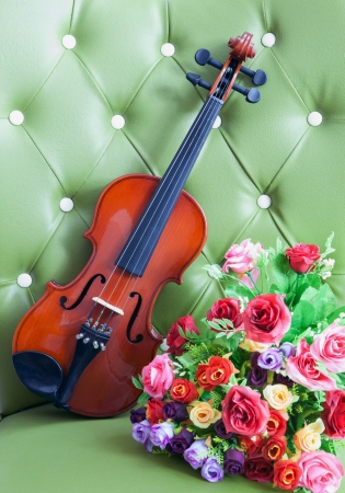 violin and bouquet flowers on luxury  green leather Stock Photo - 14395336