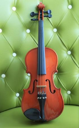 violin on green luxury leather of sofa photo