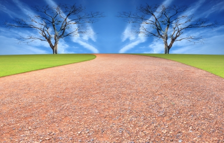 running track and blue sky background with dry tree Stock Photo - 14716908