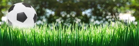 panorama of soccer football on green grass photo