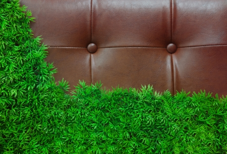 green grass and leather background  use as backdrop photo
